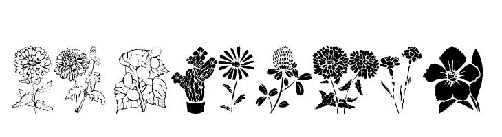 DT Flowers 1  नि: शुल्क फ़ॉन्ट्स डाउनलोड